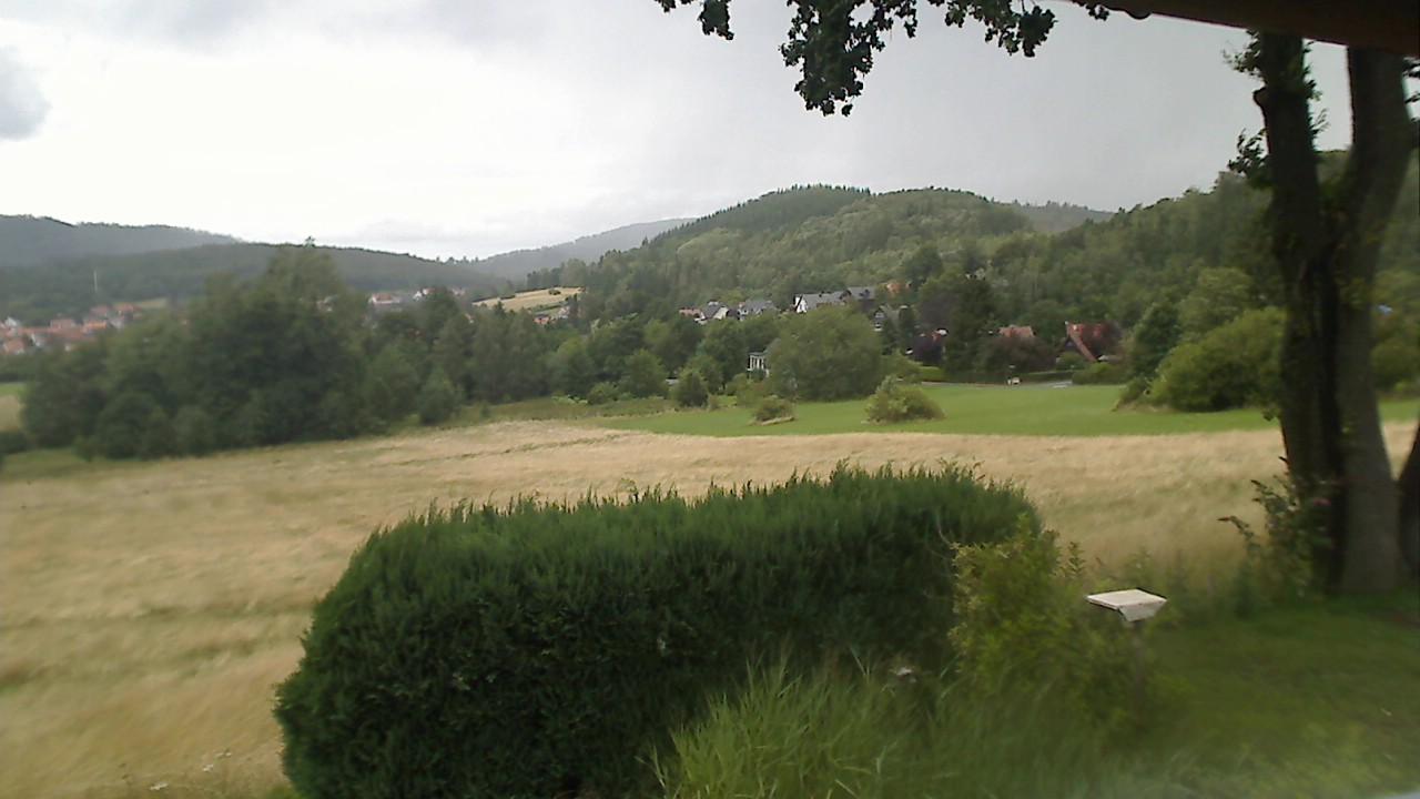 [billede: Webcam i Wolfshagen im Harz]